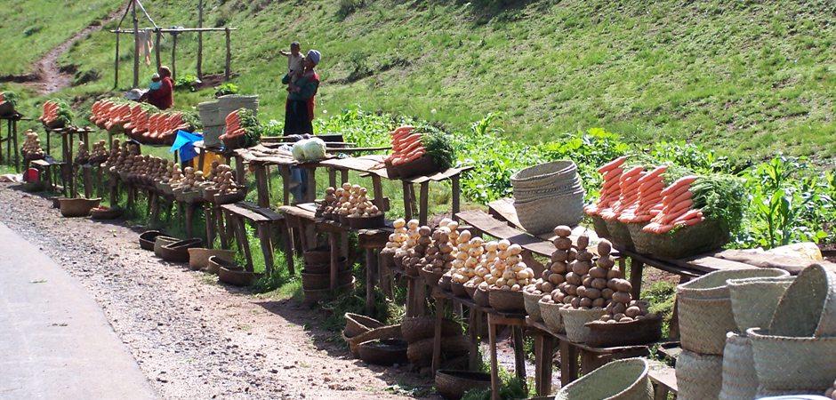 Le marché de Madagascar