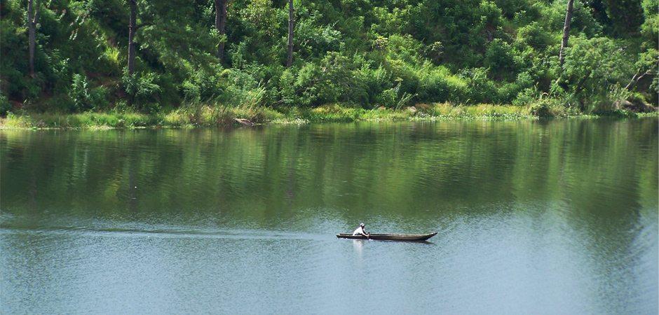 La flore des lacs fleuves et rivières