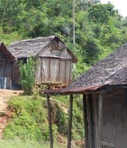 Une maison construite à partir de feuilles de Ravinala sec
