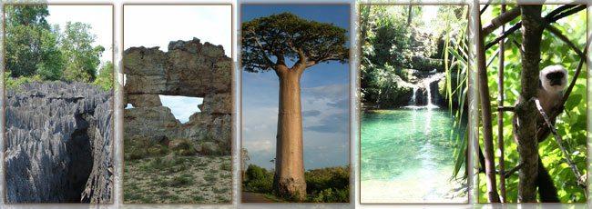 Les Parcs Nationaux à Madagascar