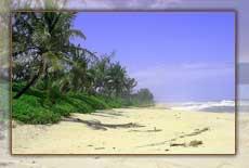Les belles plages du pays Mahafaly