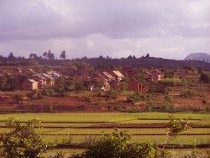 Dans l'Est de Madagascar, les Betsimisaraka