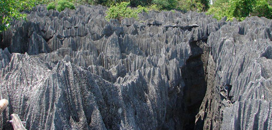 La Réserve Naturelle Intégrale des Tsingy du Bemaraha
