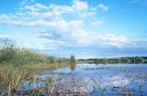 Lac Kinkony