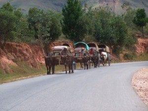Les charrettes traditionnelles Malgaches
